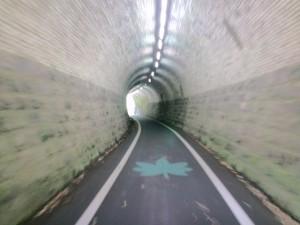 メイプル耶馬サイクリングロードトンネル